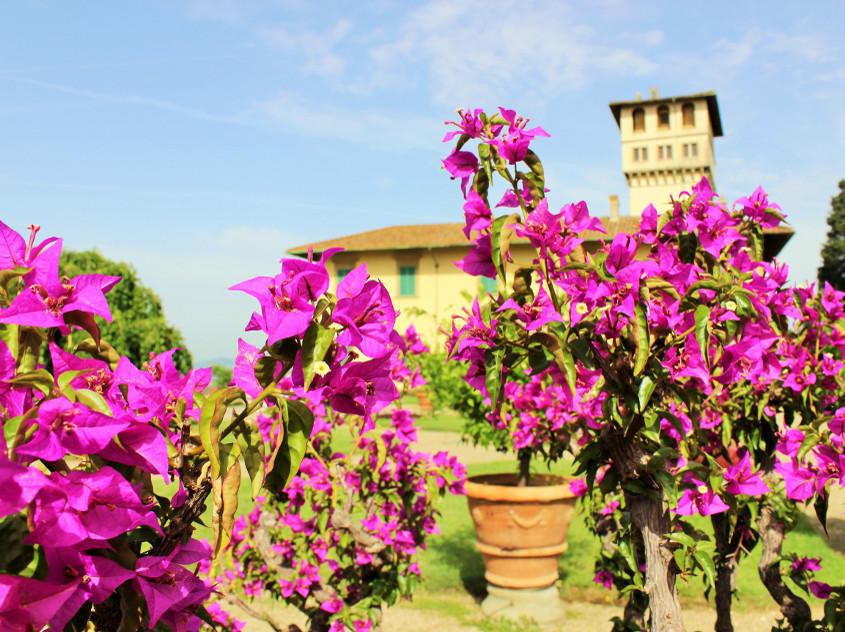 A_Villa di Castello